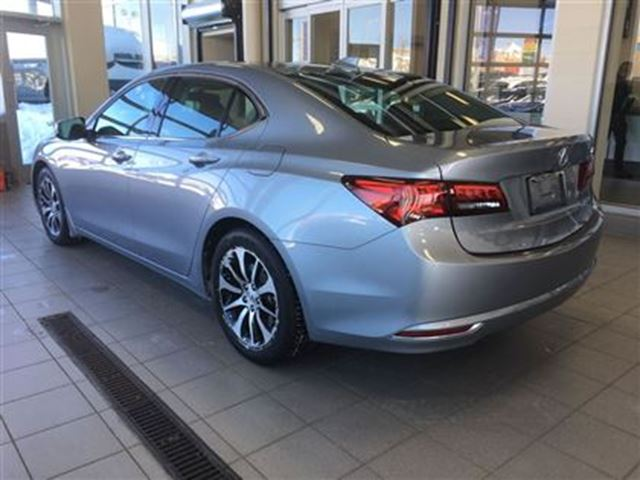 2016 acura tlx paws calgary alberta used car for sale 2689492. Black Bedroom Furniture Sets. Home Design Ideas