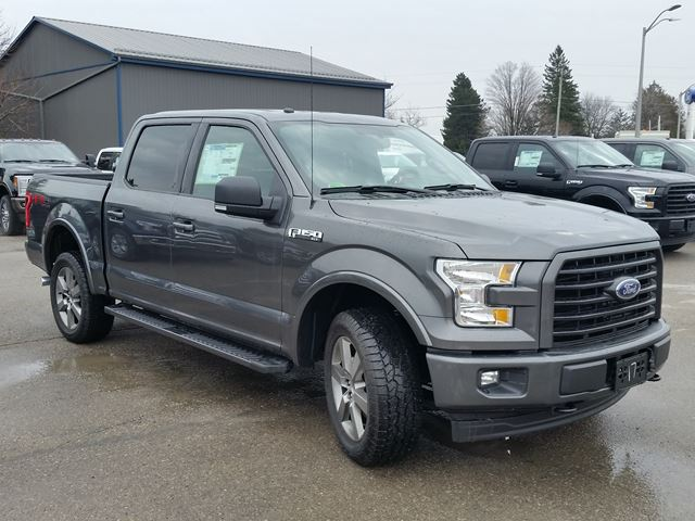 2017 ford f 150 xlt port perry ontario new car for sale 2695584. Black Bedroom Furniture Sets. Home Design Ideas