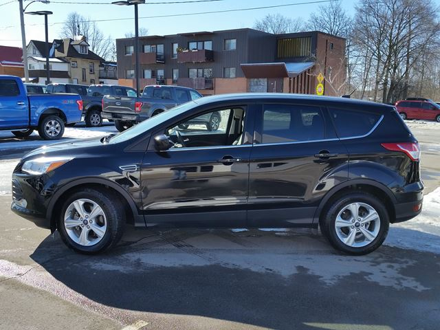 2016 ford escape se lindsay ontario used car for sale 2700066. Black Bedroom Furniture Sets. Home Design Ideas