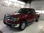 2014 Ford F-150 XLT in Fonthill, Ontario