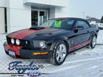 2005 Ford Mustang GT *Saleen Supercharged* *MINT* in Port Perry, Ontario