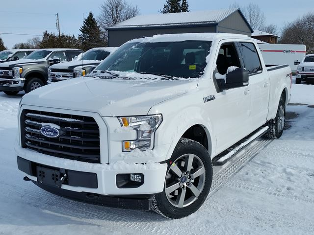2017 ford f 150 xlt port perry ontario new car for sale 2700570. Black Bedroom Furniture Sets. Home Design Ideas