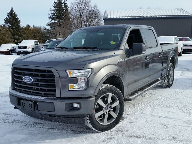 2017 ford f 150 xlt port perry ontario new car for sale 2700573. Black Bedroom Furniture Sets. Home Design Ideas