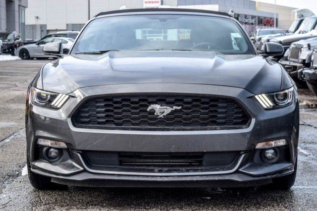 2016 ford mustang ecoboost premium nav r start backup cam bluetooth 18alloys thornhill. Black Bedroom Furniture Sets. Home Design Ideas