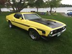 1971 Ford Mustang 1971 Mustang Fastback in Perth, Ontario