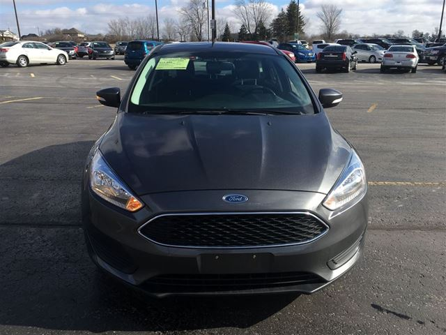 2015 ford focus se hatchback cayuga ontario used car for sale 2706412. Black Bedroom Furniture Sets. Home Design Ideas