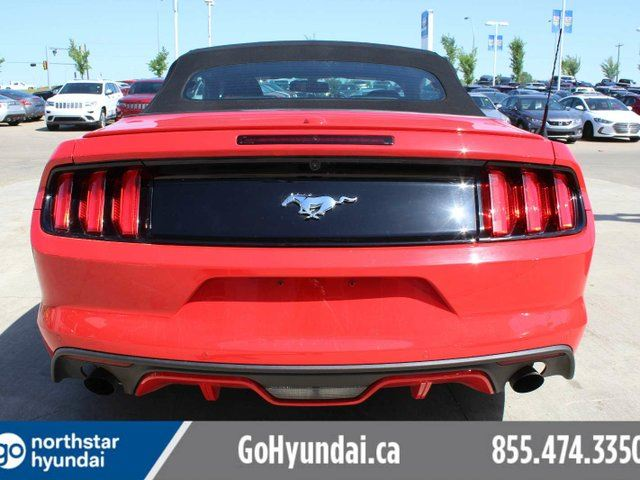 2016 ford mustang ecoboost premium leather convertible edmonton alberta used car for sale. Black Bedroom Furniture Sets. Home Design Ideas