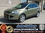 2013 Ford Escape SEL *Lthr/Roof/Nav in Winnipeg, Manitoba