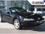 2002 Ford Mustang V6 Convertible in Coquitlam, British Columbia