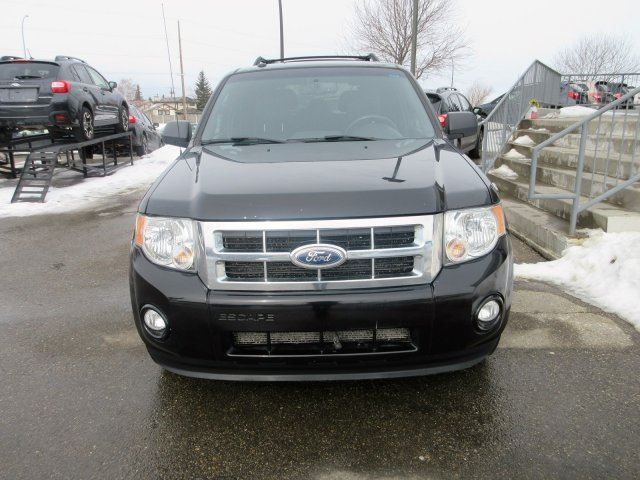 2012 Ford Escape XLT Calgary Alberta Used Car For Sale