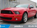 2008 Ford Shelby