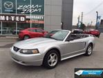 2003 Ford Mustang Deluxe /  CONVERTIBLE / V6 / LOW KMS!!! in Toronto, Ontario
