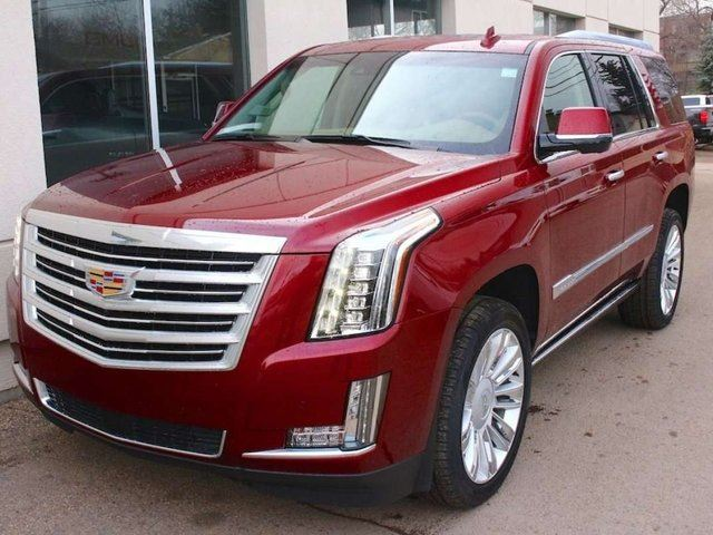 2016 cadillac escalade platinum 4x4 edmonton alberta. Black Bedroom Furniture Sets. Home Design Ideas