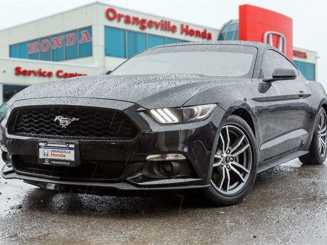 2016 FORD MUSTANG EcoBoost Turbo in Orangeville, Ontario