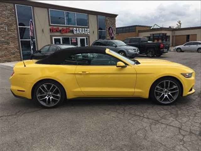 2016 ford mustang ecoboost premium wow navigation leather st catharines ontario car for sale. Black Bedroom Furniture Sets. Home Design Ideas