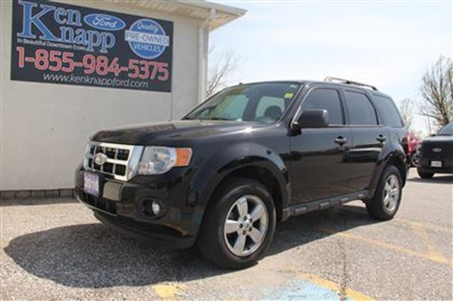 2010 Ford Escape XLT   Leather   Moonroof in Essex, Ontario