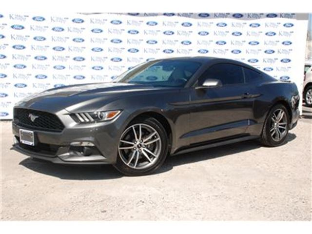 2015 Ford Mustang EcoBoost Premium in Welland, Ontario