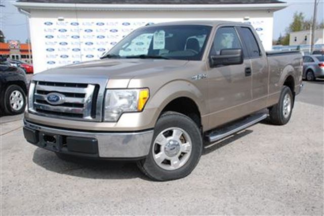 2011 Ford F-150 XLT in Welland, Ontario