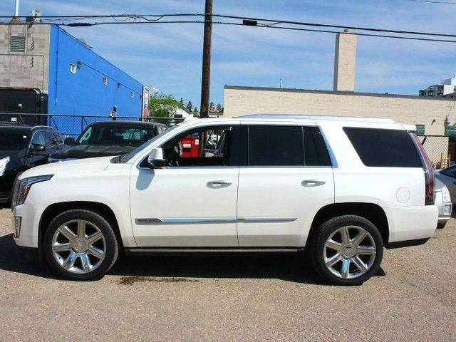cadillac escalade 2015 white. 2015 cadillac escalade premium white diamond 62 v8 low kms edmonton alberta car for sale 2788494 white