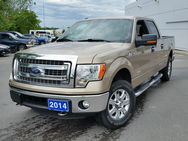 2014 Ford F-150 XLT in Lindsay, Ontario