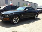 2007 Ford Mustang 5SP CON (finance available no credit bad credit )  in Ottawa, Ontario