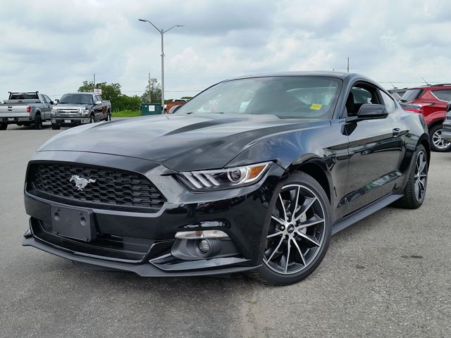 ford mustang insurance cost 2017 2018 2019 ford price release date reviews. Black Bedroom Furniture Sets. Home Design Ideas