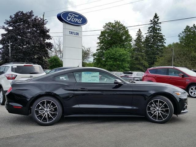 new 2017 ford mustang ecoboost port perry. Black Bedroom Furniture Sets. Home Design Ideas