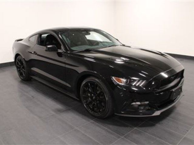 used 2016 ford mustang gt 5 0 litre lowest price in canada calgary. Black Bedroom Furniture Sets. Home Design Ideas