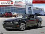 2014 Ford Mustang GT  V-8  SYNC  LCD MSG CENTRE  HEARTED SEATS in Sherwood Park, Alberta