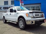 2013 Ford F-150 XLT in Quesnel, British Columbia