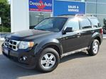 2009 Ford Escape XLT 4x4 in Brantford, Ontario