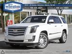 2016 Cadillac Escalade Platinum EVERY OPTION FINANCE AVAILABLE in Edmonton, Alberta