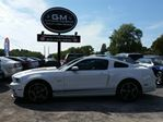 2014 Ford Mustang GT in Rockland, Ontario