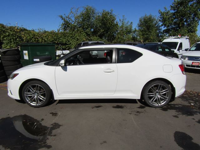 2011 SCION TC FIVE SPEED! MOONROOF! in St Catharines, Ontario