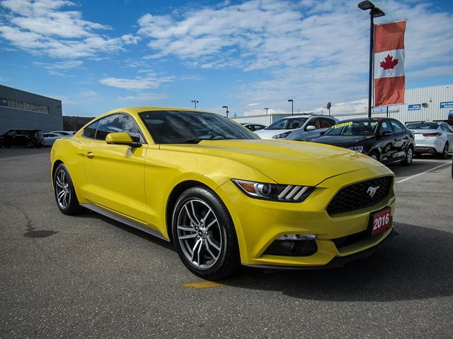 2016 ford mustang grimsby ontario car for sale 2894693. Black Bedroom Furniture Sets. Home Design Ideas