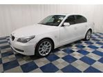2009 BMW 5 Series xDrive AWD/LEATHER/SUNROOF in Winnipeg, Manitoba