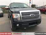 2012 Ford F-150 Platinum   LEATHER   NAV   ROOF   ECO   CAM in London, Ontario