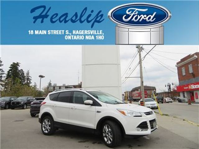 2015 Ford Escape Titanium in Hagersville, Ontario