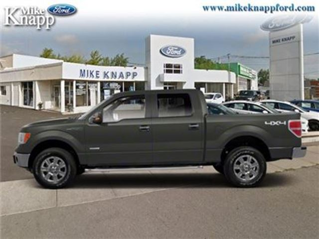 2010 Ford F-150 - in Welland, Ontario