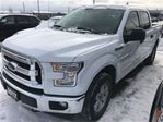 2017 Ford F-150 XLT Low KM's, 4x4, V8 Crew Cab!! in Thunder Bay, Ontario