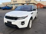 2015 Land Rover Range Rover Evoque HEATED SEATS LEATHER BACK UP CAM SUNROOF in Cambridge, Ontario