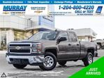 2015 Chevrolet Silverado 1500 LS in Winnipeg, Manitoba