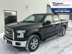 2015 Ford F-150 XLT Supercrew 4X4*XTR Package* in Winnipeg, Manitoba