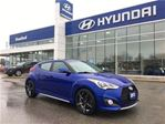 2013 Hyundai Veloster Turbo   Auto   1-Owner in Brantford, Ontario