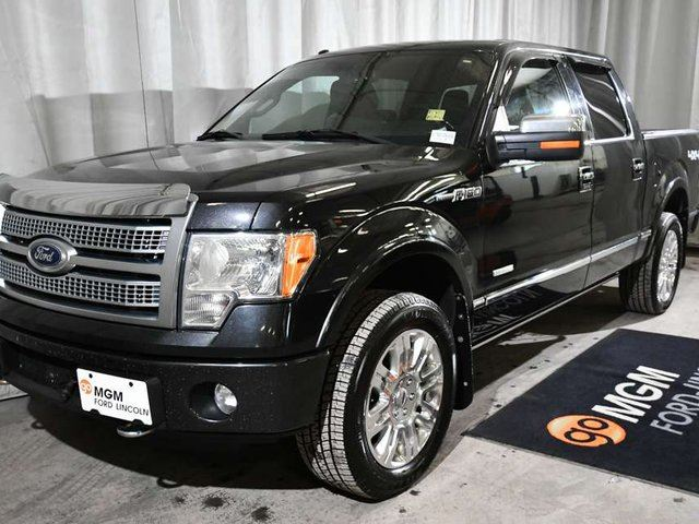 2012 FORD F-150 Platinum 4x4 SuperCrew Cab 5.5 ft. box 145 in. WB in Red Deer, Alberta