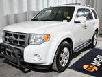 2009 Ford Escape Limited in Red Deer, Alberta