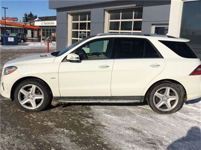 2012 MERCEDES-BENZ M-CLASS SOLD SOLD SOLD ML350 BlueTEC 4MATIC in St George Brant, Ontario