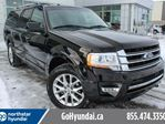 2017 Ford Expedition Limited LEATHER/ROOF/NAVIGATION in Edmonton, Alberta