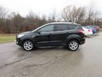 2016 Ford Escape TITANIUM in Cayuga, Ontario