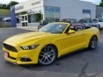 2015 Ford Mustang EcoBoost Premium in Kitchener, Ontario
